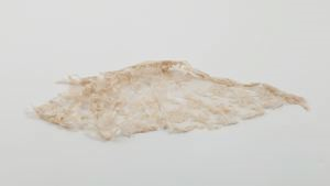 Image of Lace fragment, flowers run in net-like Margot lace
