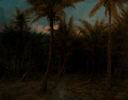 Image of Untitled [Hawaiian Landscape]